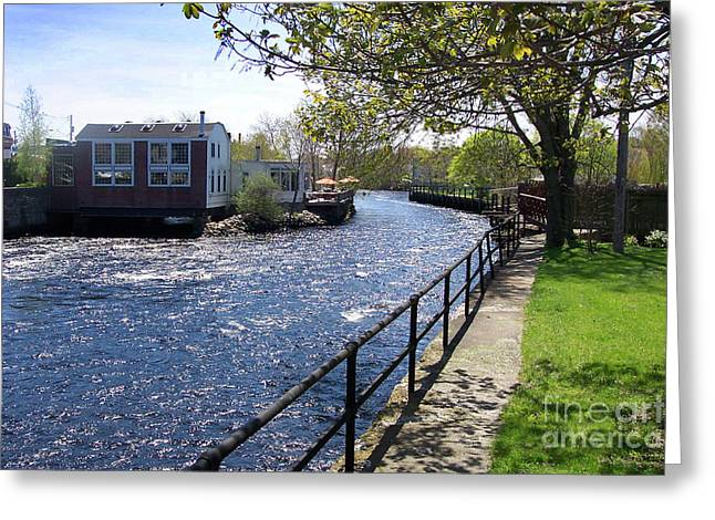 Winding River Greeting Card