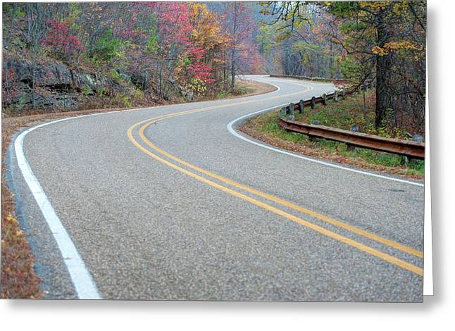 Greeting Card featuring the photograph Winding Roads In Autumn by Gregory Ballos