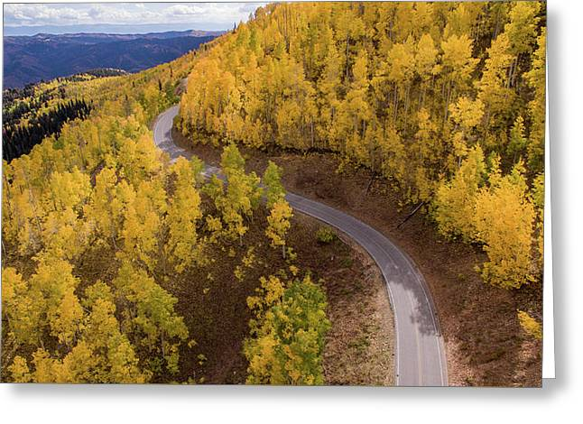 Winding Through Fall Greeting Card