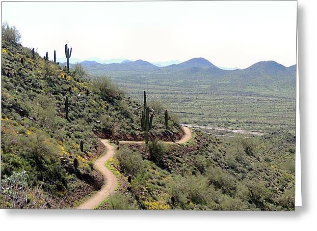 Winding Trail Greeting Card by Gordon Beck