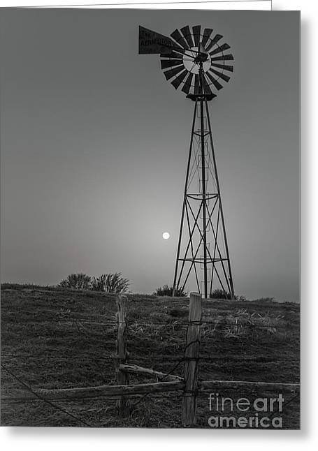 Windmill At Dawn Greeting Card by Robert Frederick
