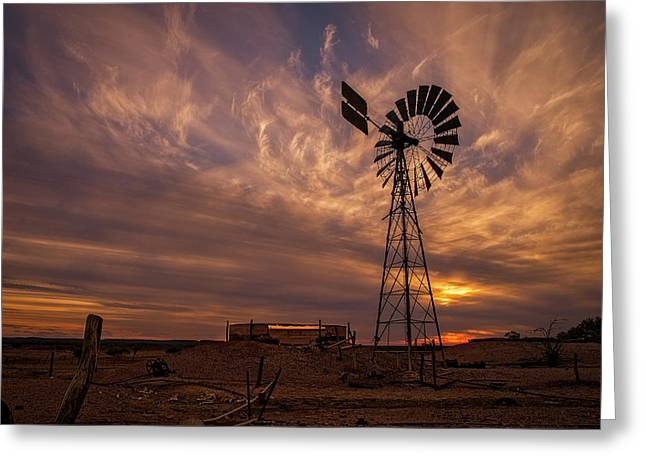 Windmill At Sunset Greeting Card by Catherine Reading