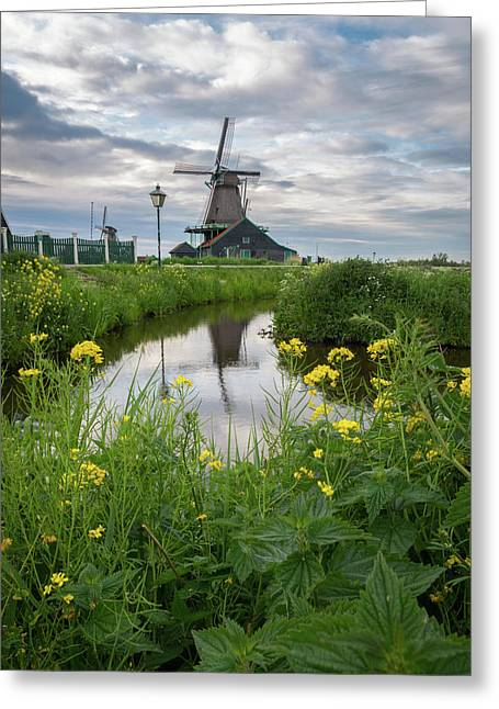 Windmill At Zaanse Schans Greeting Card