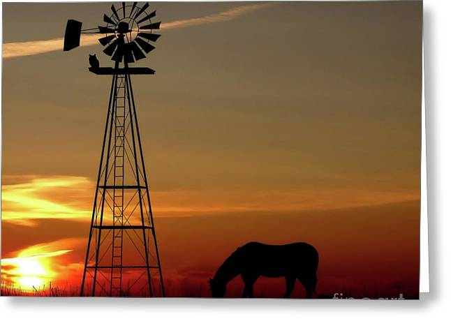 Windmill Sunset Greeting Card by Anthony Djordjevic