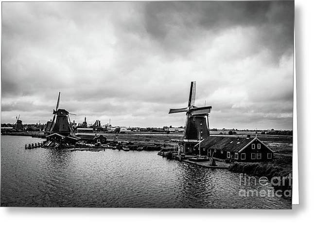 Windmills At Zaanse Schans Bw Greeting Card