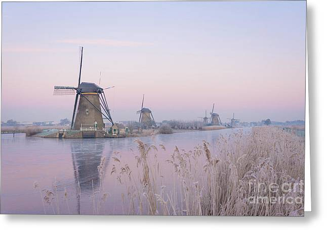 Windmills In The Netherlands In The Soft Sunrise Light In Winter Greeting Card