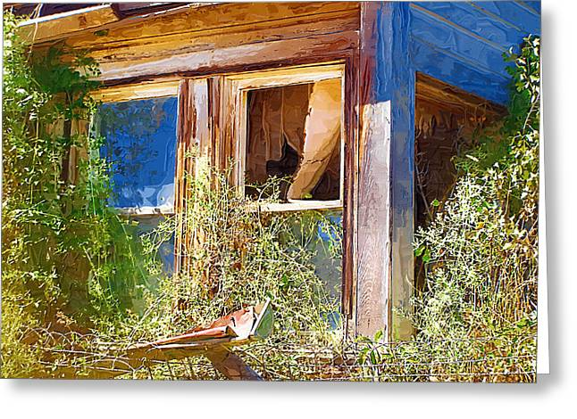 Greeting Card featuring the photograph Window 2 by Susan Kinney