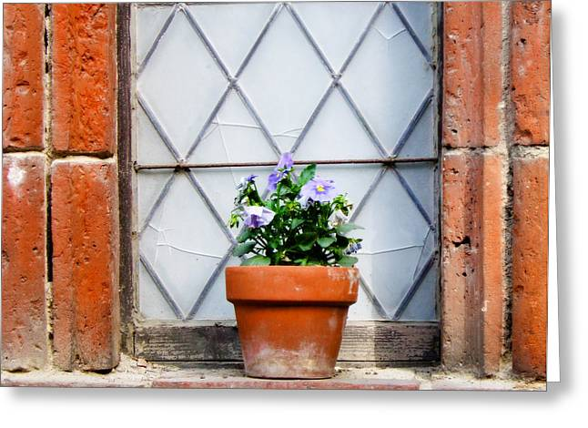 Window And Pots I Greeting Card by Carl Jackson