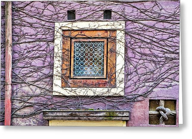 Window And Vines - Prague Greeting Card