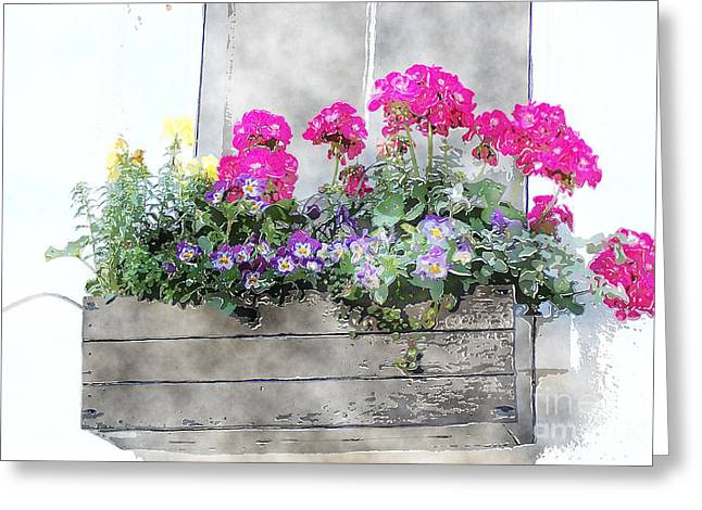 Window Box 5 Greeting Card