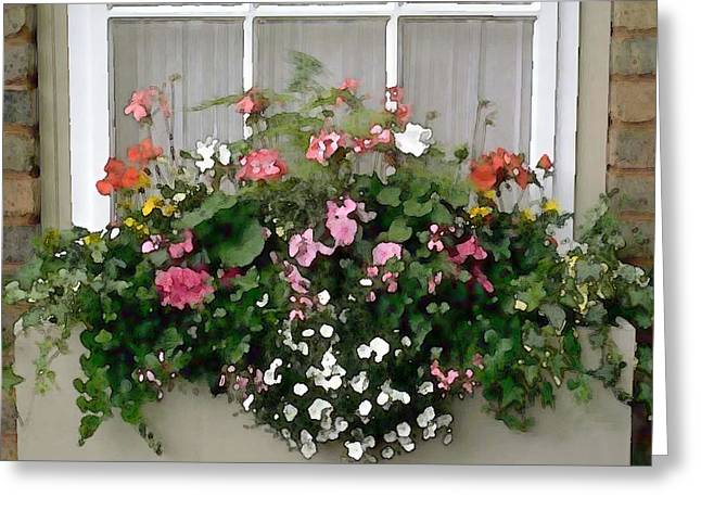 Window Box Of Mixed Flowers Greeting Card by Elaine Plesser