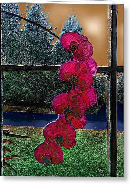 Window Dressing Greeting Card by Gordon Beck