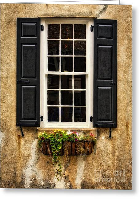 Window Dressing Greeting Card by Jerry Fornarotto