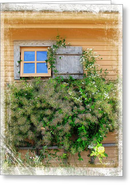 Greeting Card featuring the photograph Window Floral In Plymouth by Joan  Minchak