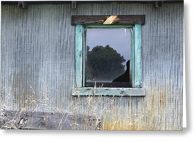 Country Chic Greeting Cards - Window Framed in Aqua Greeting Card by Glennis Siverson