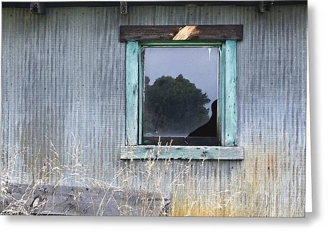 Window Framed In Aqua Greeting Card by Glennis Siverson