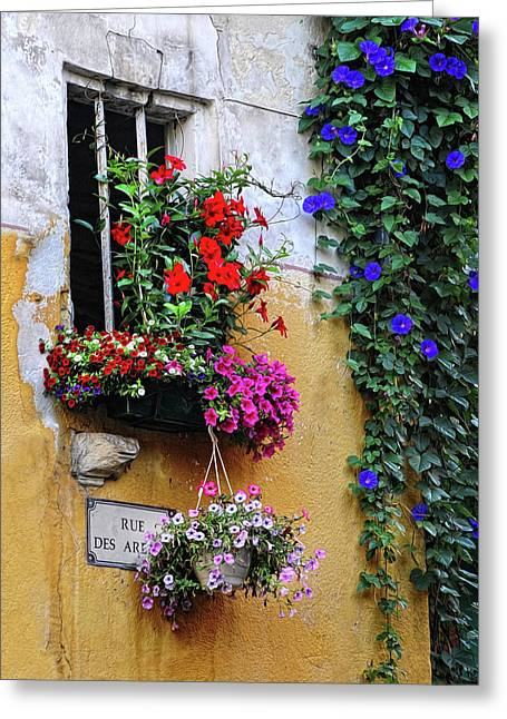 Window Garden In Arles France Greeting Card