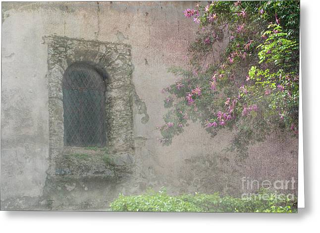 Window In The Wall Greeting Card by Victoria Harrington