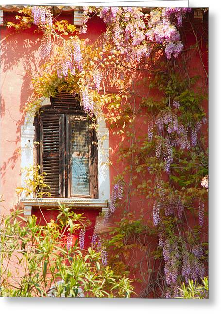 Window In Venice With Wisteria Greeting Card by Michael Henderson
