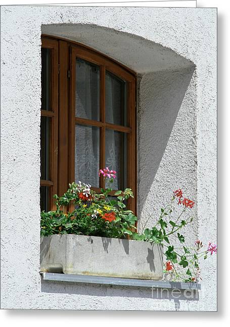 Window In Zermatt Greeting Card by Christine Amstutz