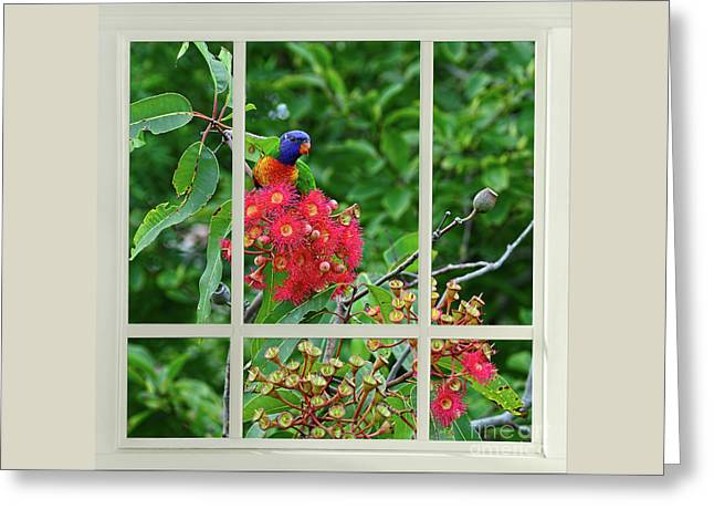 Greeting Card featuring the photograph Window Of Nature By Kaye Menner by Kaye Menner