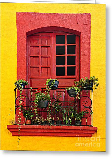 Glass Wall Greeting Cards - Window on Mexican house Greeting Card by Elena Elisseeva