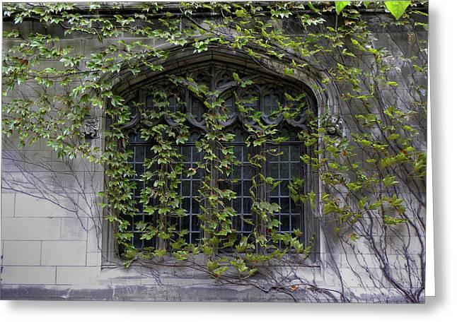 Window Scene University Of Chicago 2009 Greeting Card