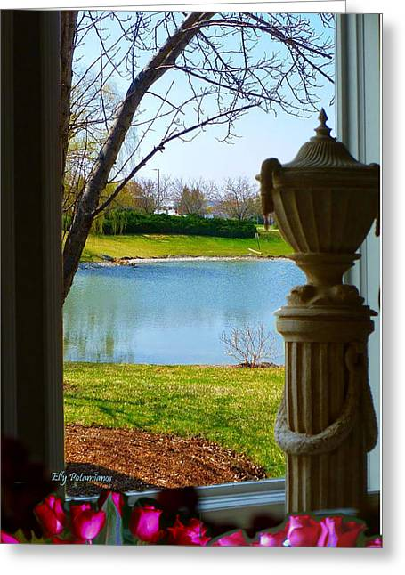 Window View Pond Greeting Card