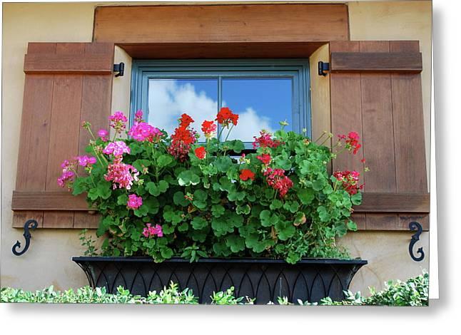 Window With Geraniums Greeting Card