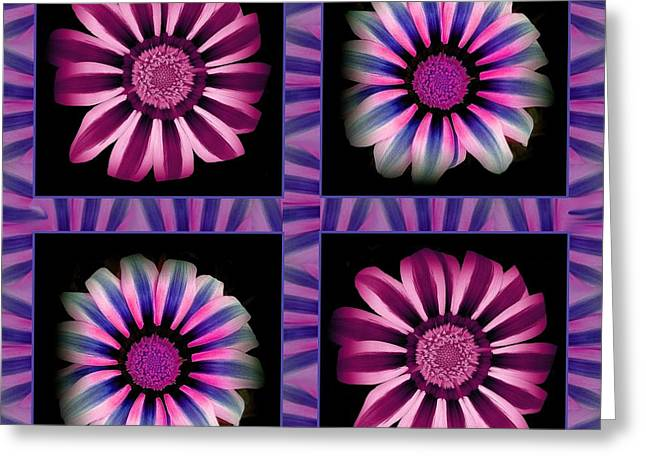 Windowpanes Brimming With  Moonburst Stripes Of Flowers - Scene 3 Greeting Card by Jacqueline Migell