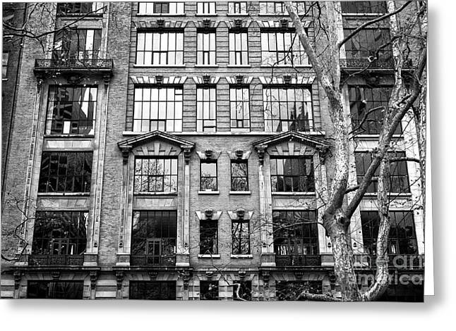 Windows From Bryant Park Greeting Card by John Rizzuto