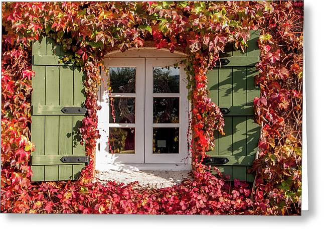 Window,shutters,and Fall Colors Greeting Card