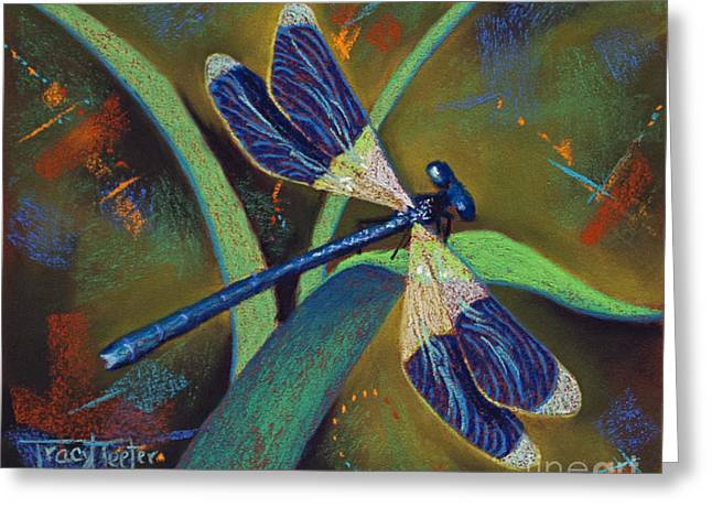 Winds Of Change Greeting Card by Tracy L Teeter