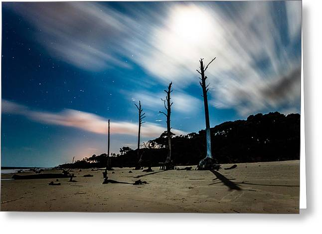 Winds Of Driftwood Beach Greeting Card