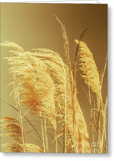 Windswept Autumn Brush Grass Greeting Card