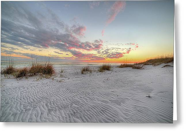 Windswept Dunes In South Walton Greeting Card by JC Findley
