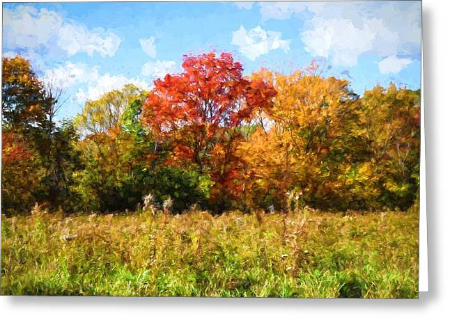 Windy Autumn Day In New England Greeting Card by Lilia D