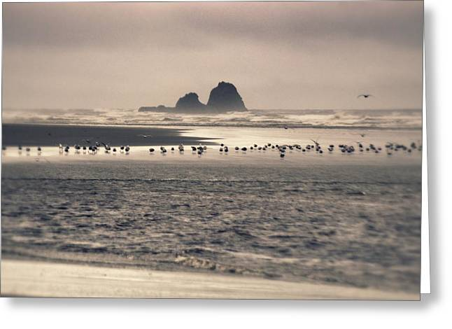 Greeting Card featuring the photograph Windy Balmy Day At The Beach by Tikvah's Hope