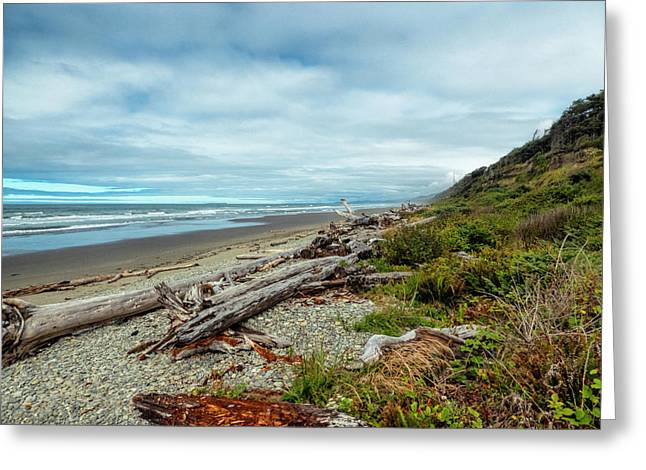 Windy Beach In Oregon Greeting Card
