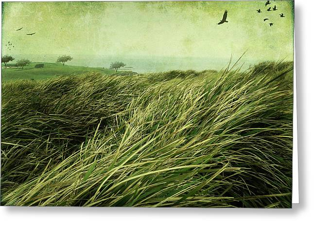Greeting Card featuring the digital art Windy Day On The Nut by Margaret Hormann Bfa