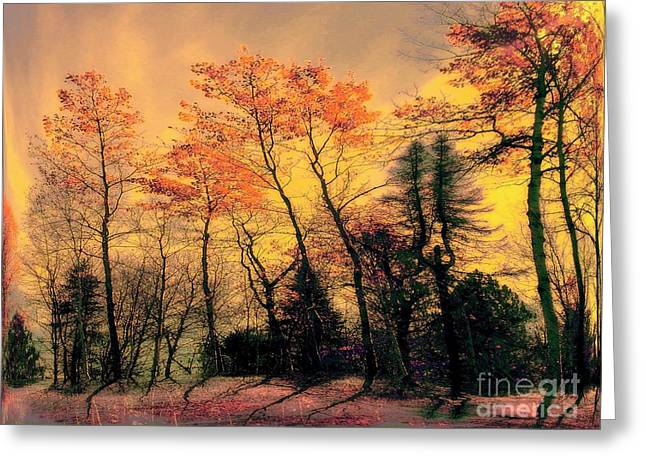 Greeting Card featuring the photograph Windy  by Elfriede Fulda