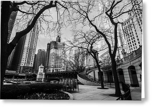 Windy Mornings In The Chi  Greeting Card