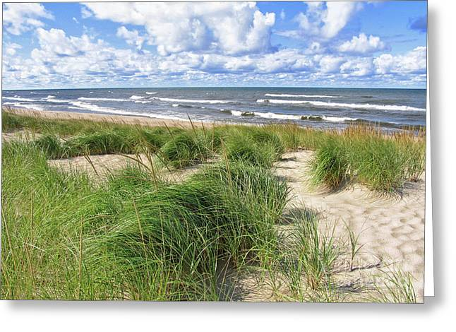 Windy Shoreline Greeting Card by Kathi Mirto