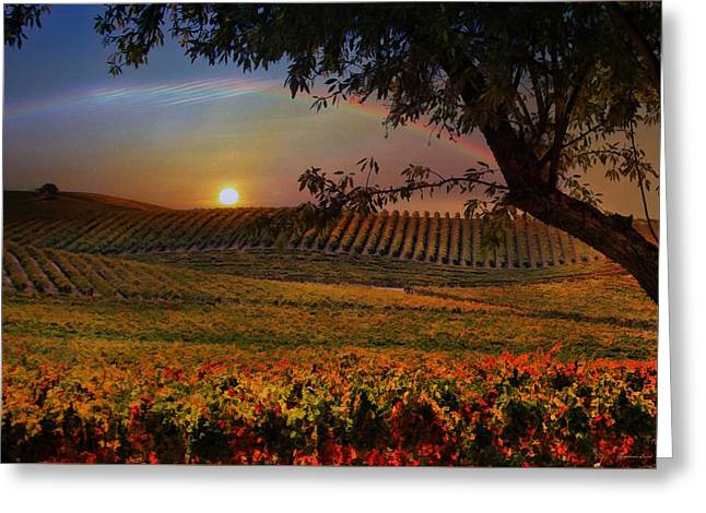 Wine Country Paradise Greeting Card by Stephanie Laird