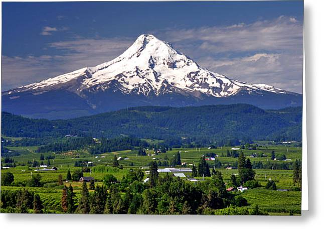 Mt Hood Greeting Cards - Wine Country Greeting Card by Scott Mahon