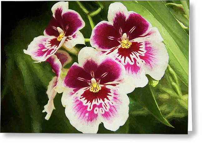 Greeting Card featuring the photograph Wine Orchids- The Risen Lord by Penny Lisowski