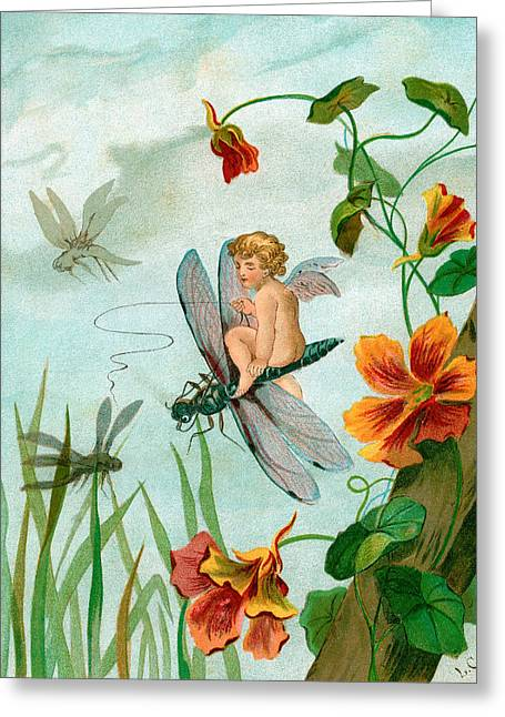 Winged Fairy Riding A Dragonfly Near Nasturtium Flowers Greeting Card by Unknown