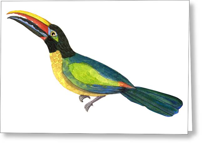 Greeting Card featuring the painting Winged Jewels 2, Watercolor Toucan Rainforest Birds by Audrey Jeanne Roberts