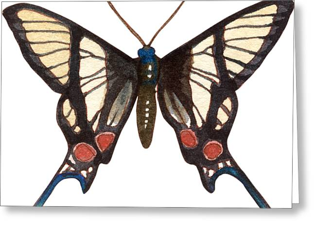 Greeting Card featuring the painting Winged Jewels 4, Watercolor Tropical Butterflie Black White Red Spots by Audrey Jeanne Roberts
