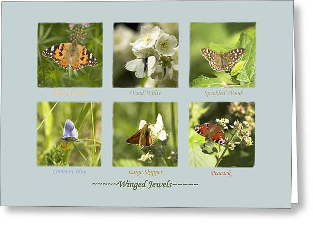 Winged Jewels Greeting Card